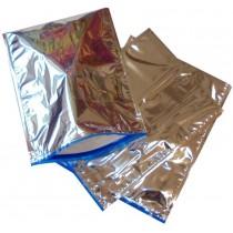 Pz 10 Busta termica cm 31 x 40 colore argento per trasporto di alimenti congelati