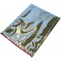 Pz 10 Busta termica cm 23,5 x 29,5 colore argento per trasporto di alimenti congelati