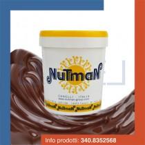 kg 1 prodotto per gelato variegato alla nocciolata fluida