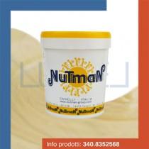 kg-1-prodotto-per-gelato-variegato-al-cioccolato-bianco-fluido
