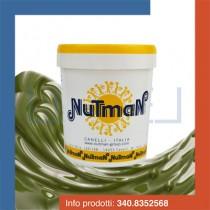 kg 1 prodotto per gelato variegato al pistacchio fluido